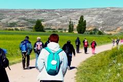 etapa-6-Camino-001