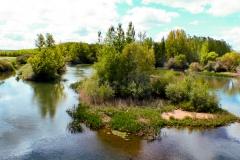 etapa-6-camino-rio-Pisuerga