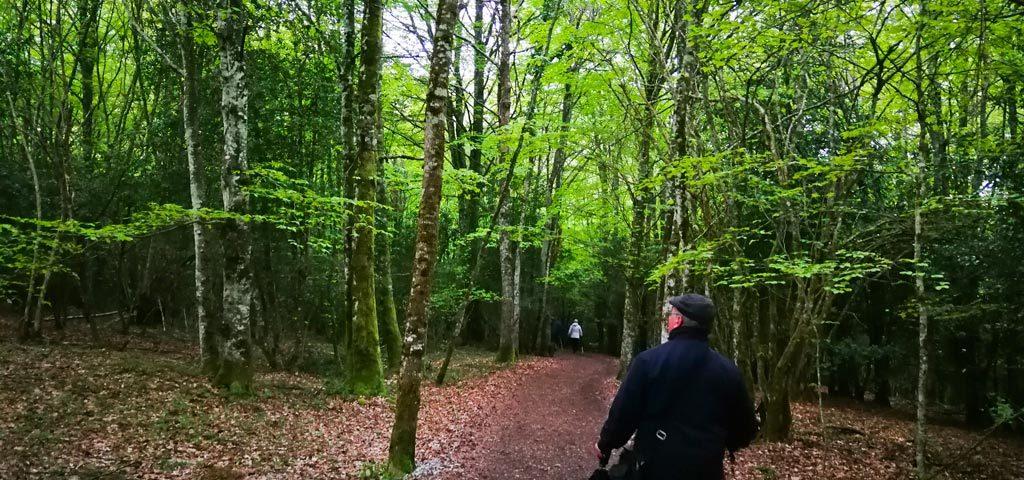 El Libro del Camino. Etapa 1: Roncesvalles – Pamplona – AUDEMA